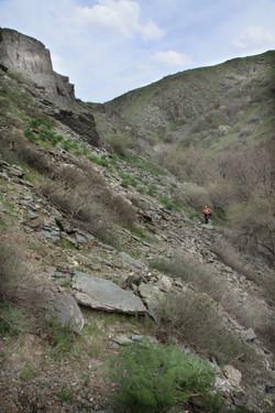 Склон- левый берег ручья Беркара