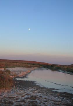 Устье реки Ушбас