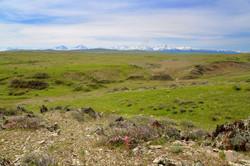 Перевал Куюк в районе новой трассы