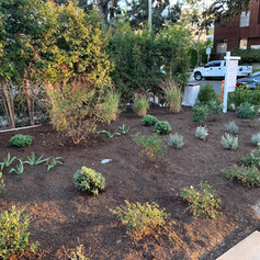 Installation of Irrigation system, trees, plants and artificial turf