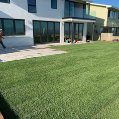 Installation of Stepping Stones, Sod, Irrigation system and planters