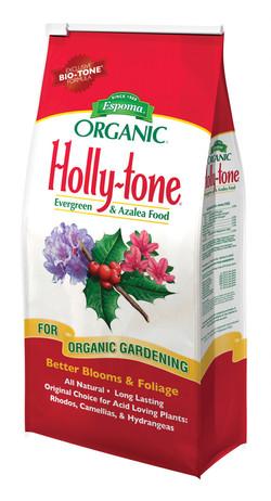 holly-tone.jpg