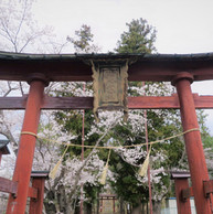 仁古田の愛宕山2