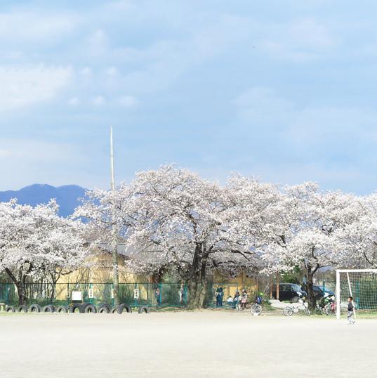 川西小学校