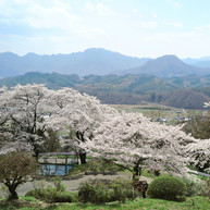 浦野の東昌寺3