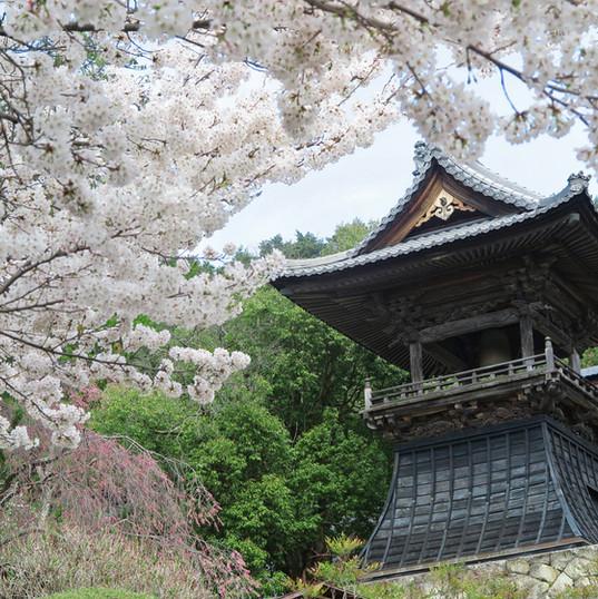 浦野の東昌寺2