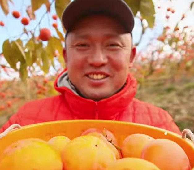 JAにじは柿の生産でも有名です