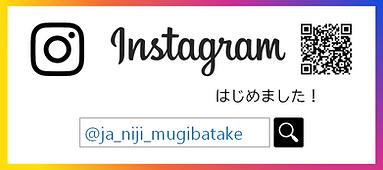 instagram_now.png