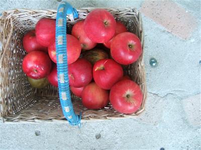 フランスかごとりんご