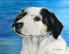 Pet portrait_Snowball_.jpg
