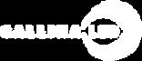 1207 Gallina Logo_WHITE.png