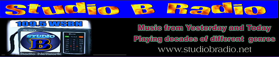 WSBN New Website Banner_with Logo_2021.png