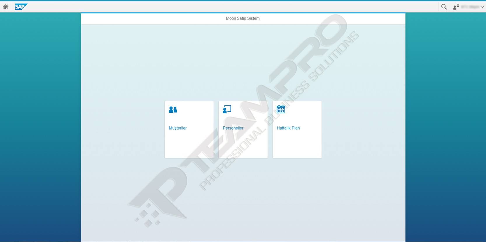 SAP Fiori | Mobil Satış Sistemi