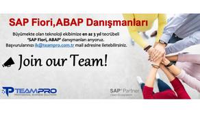 SAP Fiori,ABAP Danışmanları