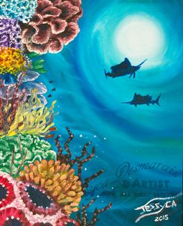 Sail fish shadow and reef