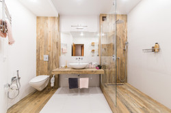 Modern bathroom interior combined with t