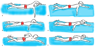 freestyle-swimming-3-600x299.png