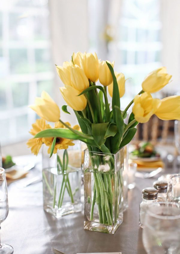 Plants are the perfect way to bring Spring inside your home. Flowers and plants can easily bring vagary into a small space.