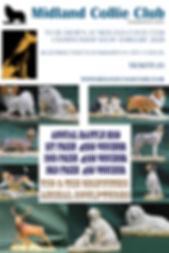 MCC ANNUAL RAFFLE POSTER 2020.jpg