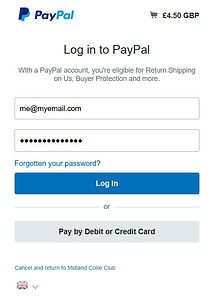 PayPal_instructions.JPG