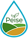 Logo Transparente 2020.png