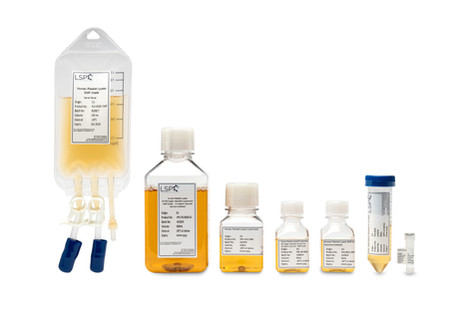 clean-medical-photography-central-photog