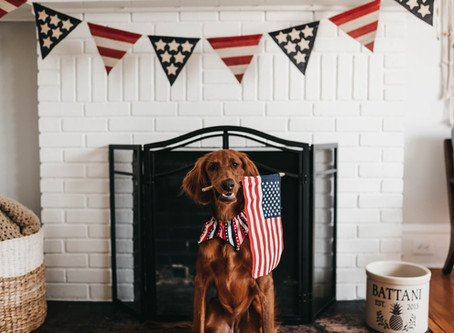 Pawsarotti's 4th of July Sale