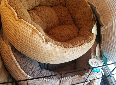 Eco-friendly Dog Beds
