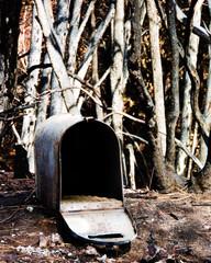 Butte Fire Mailbox