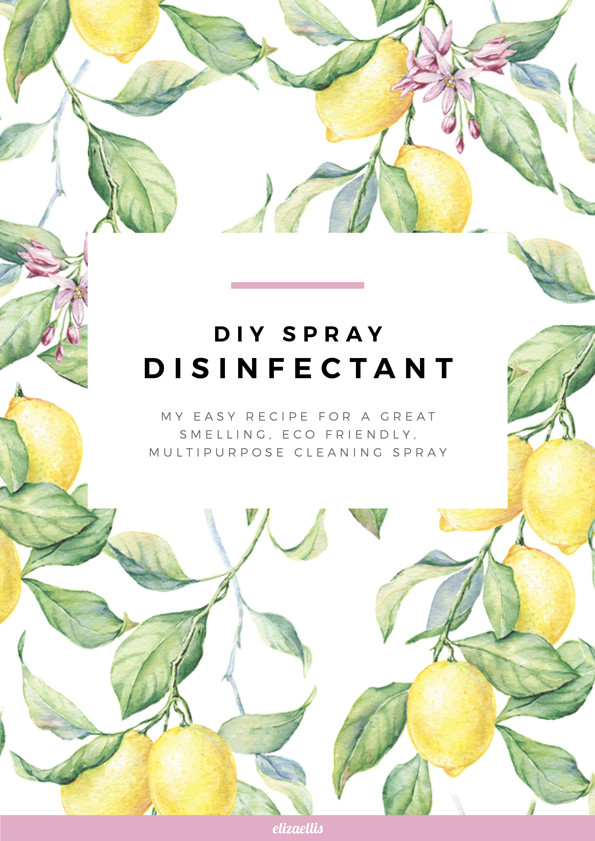 Make Your Own DIY Disinfectant Spray // Eliza Ellis. My easy recipe for a safe, great smelling, eco friendly, multipurpose cleaning spray.