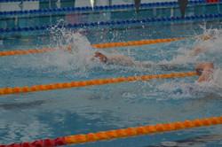 SwimFest_17 (82)