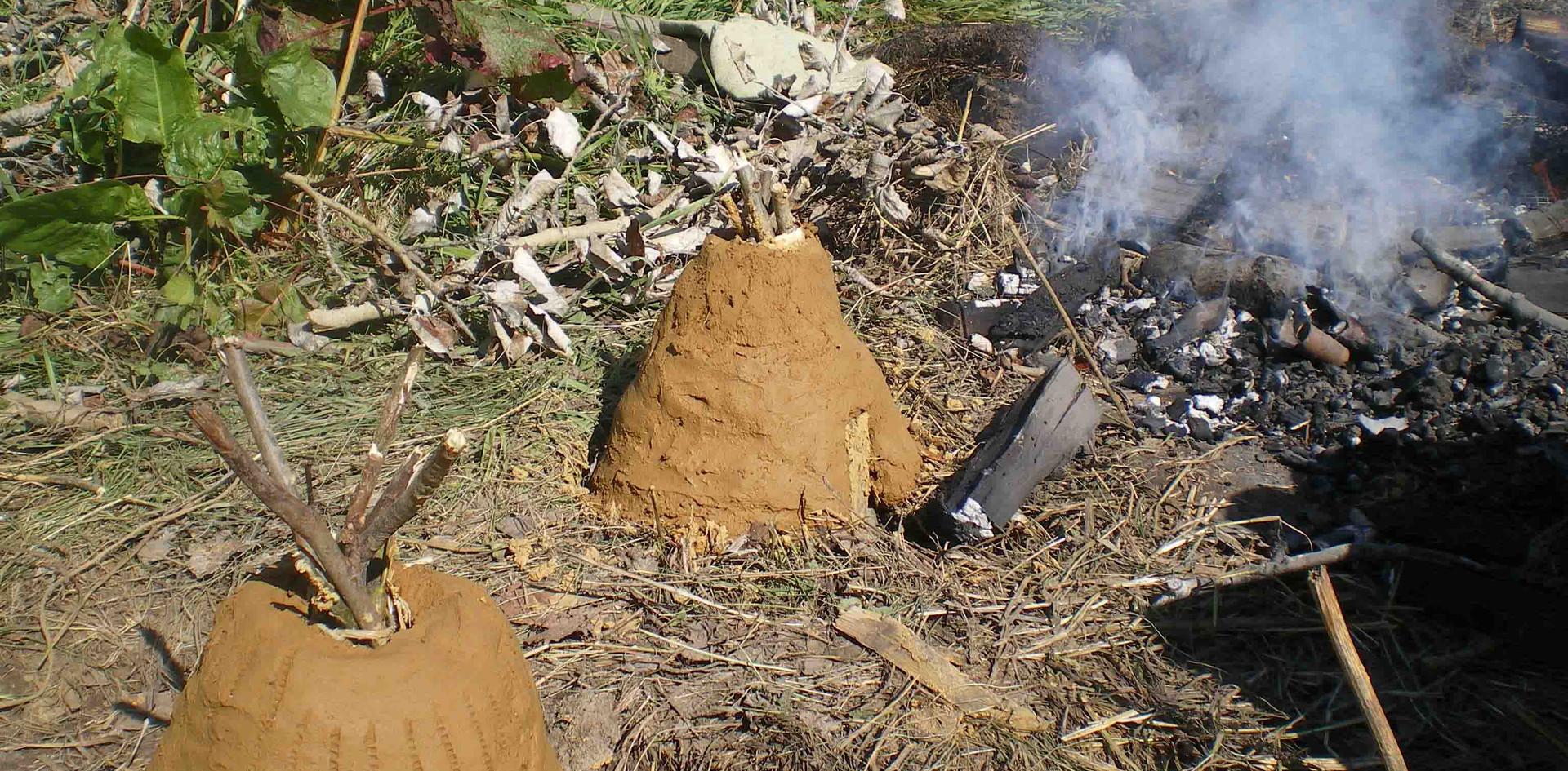 Сыродутные горны. 2010.