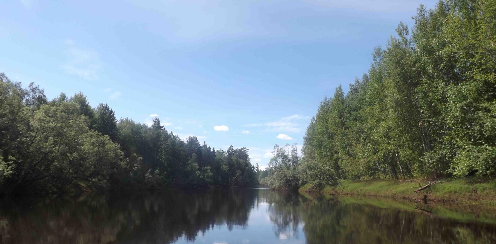 Безмятежность таёжной реки. 2013.