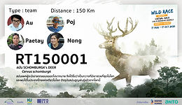 RT150001