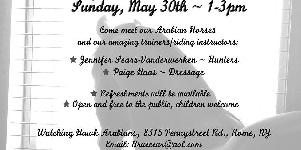Open Barn Event