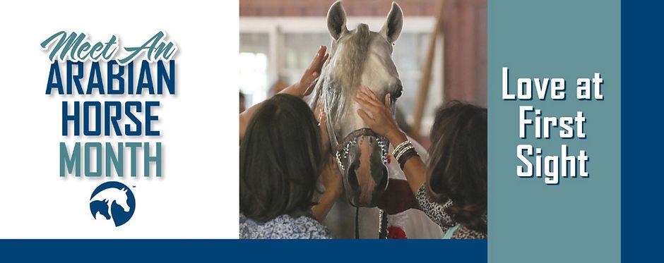 Homepage_Banner_Horse_Month_Sept.jpg_153