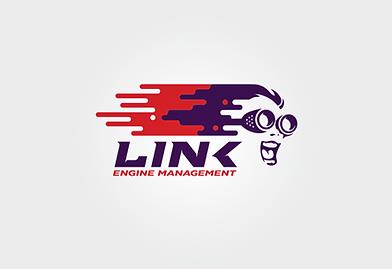 Link ECU.png