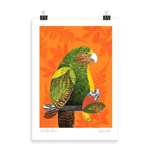 Quality Art Print - Kakapo