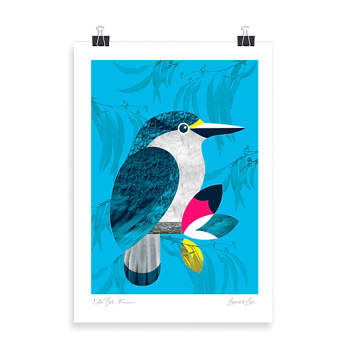 Quality Art Print - Kotare
