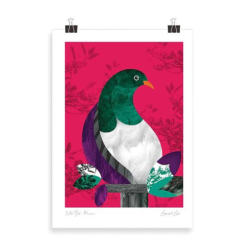 Quality Art Print - Kereru
