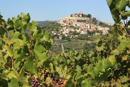 Two Istrian hilltop towns and truffle ta