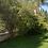 Thumbnail: למכירה בית נהדר באביאל 4 חד׳ מרווחים