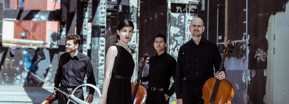 Arcis Cello Quartett 3