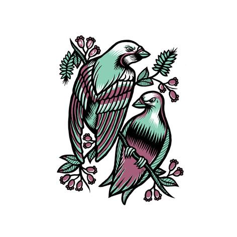 nfs_birds.jpg