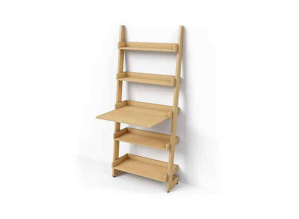 DARRAN_Rail_Shelf_2.jpg
