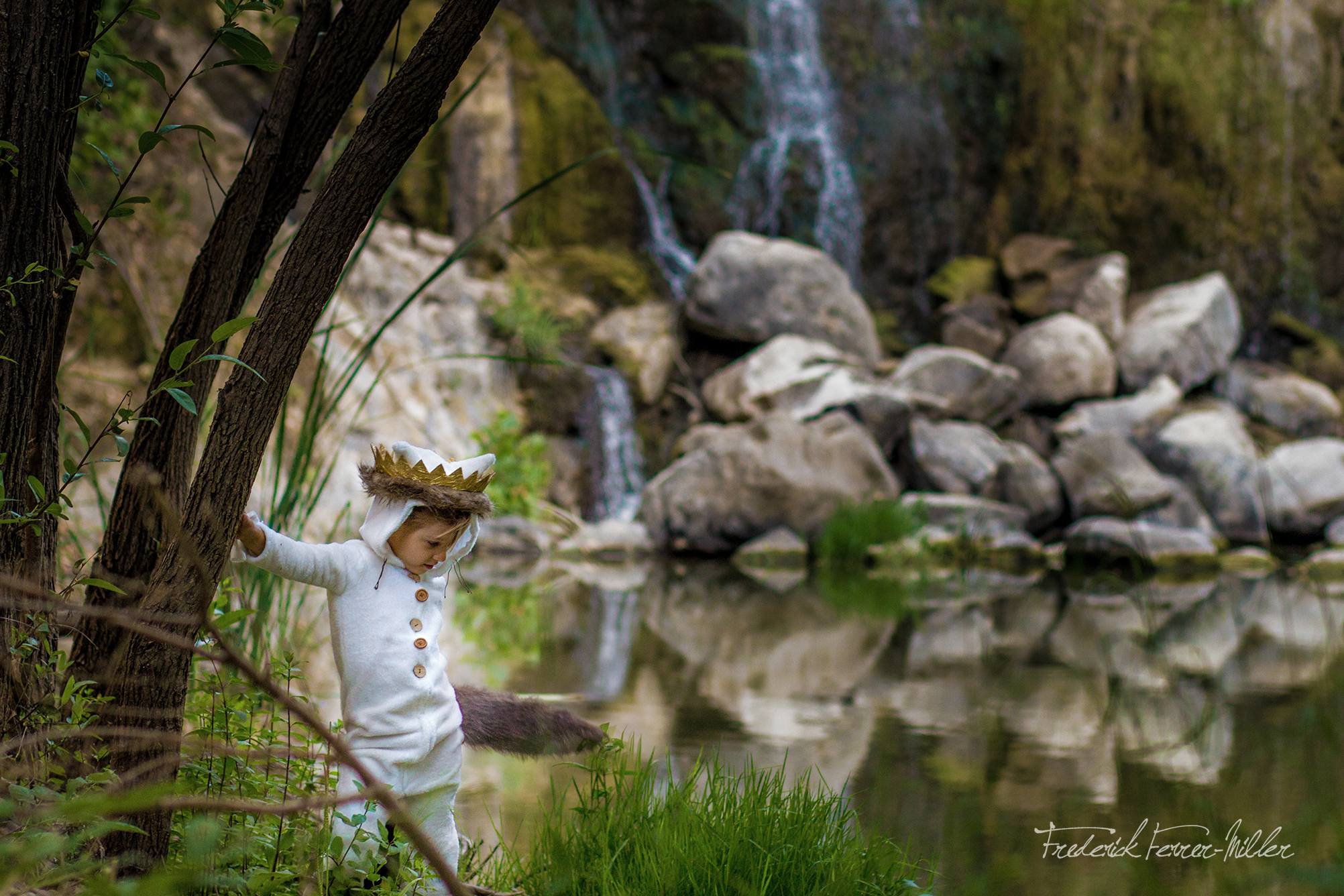 Where the Wild Things Are Theme