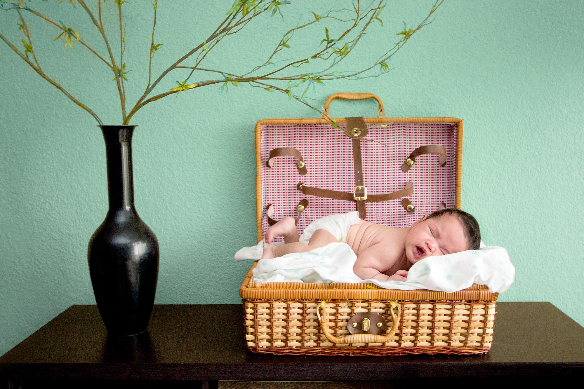 Baby Hannah Photo