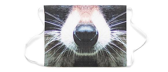 mask raccoon