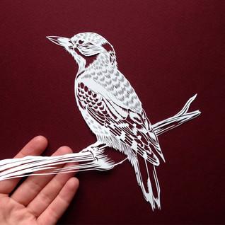Woodpecker £185