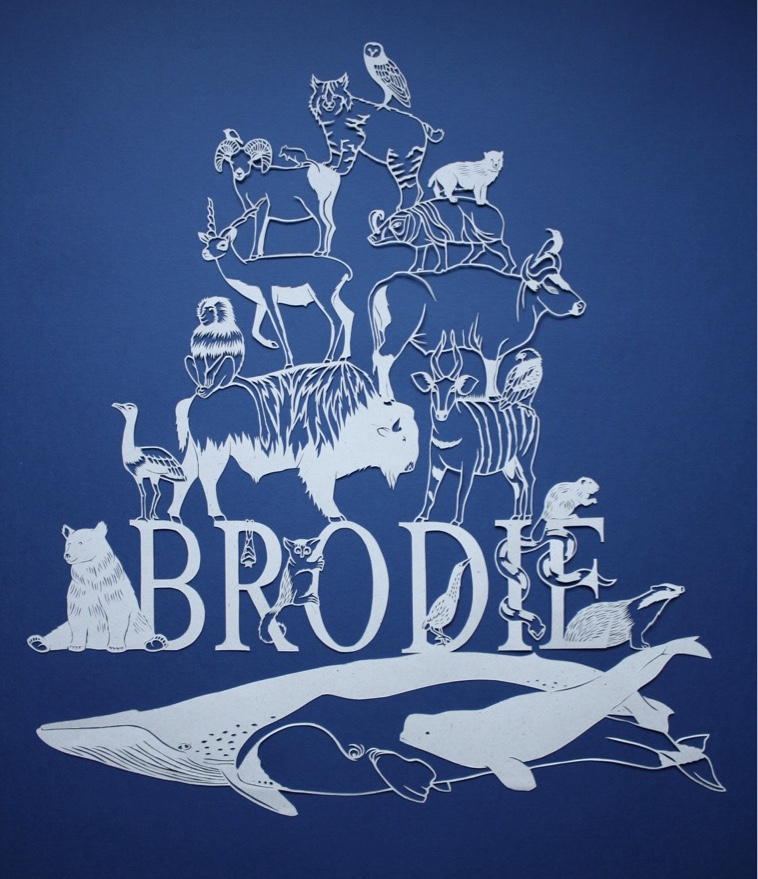 Brodie with 'B' animals